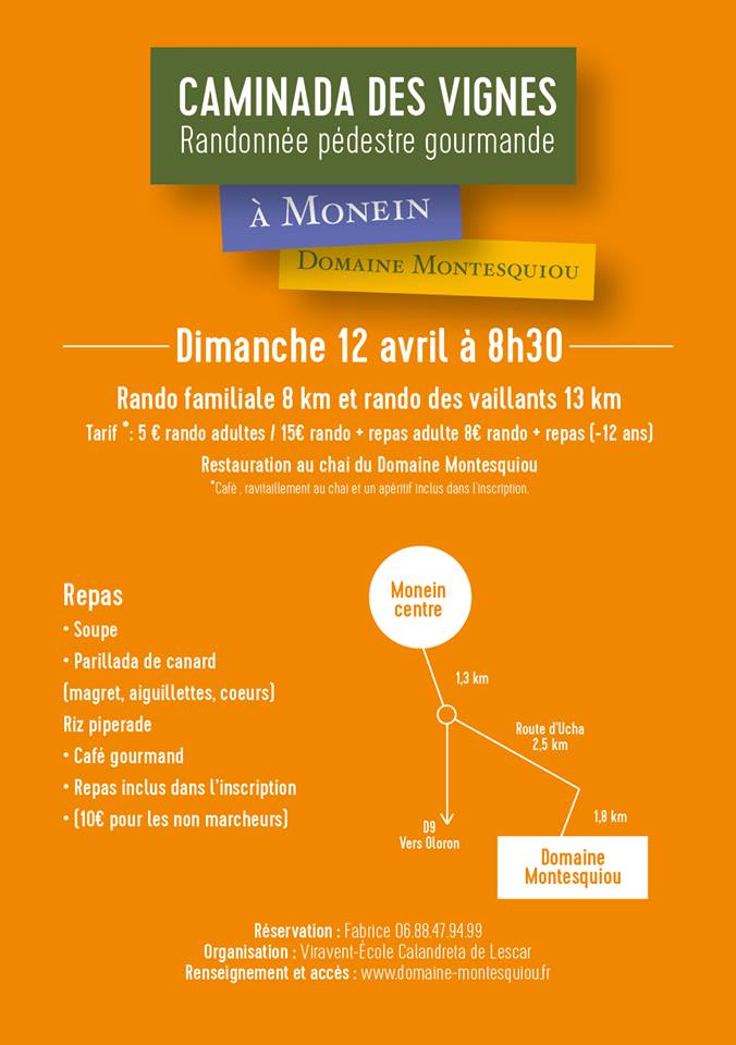 Caminade des vignes - Domaine Montesquiou- Monein
