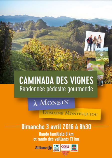 caminada des vignes  Domaine montesquiou monein