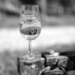 Domaine Montesquiou - verre Jurancon - monein